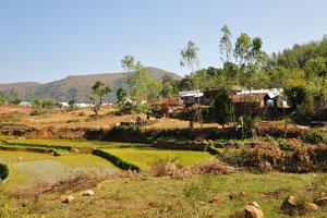 Многоуровневое рисовое поле