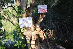 Опасность - водовороты в реке - не плавать