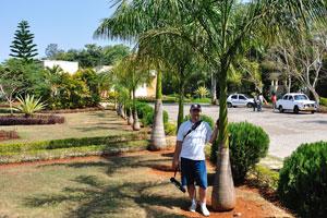 Я и королевская пальма