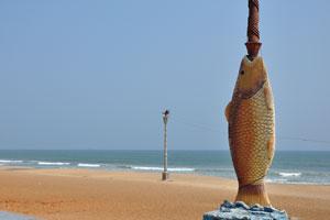 Искусственная рыба на пляже Рамакришна