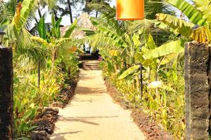 H2O Агонда: внутренний проход украшен банановыми деревьями