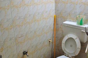 Гостевой дом Ноев Ковчег, туалет