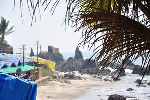 Вид сквозь пальмовые листья на скалы Арамболя