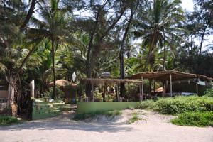Коттеджи и ресторан Пальмовая Роща