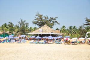 Пляжный шек Боско