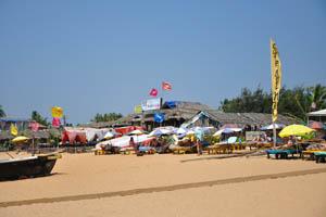 Пляжный шек Гостиная серферов 9Х