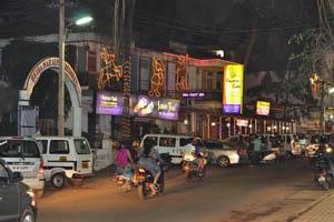 Ночная Бага - гостевой дом и ресторан Электрические кошки