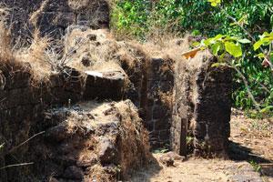 Высушенная трава распространилась по стенам
