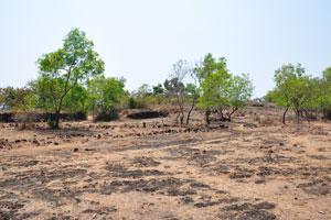 Земля форта каменистая и покрыта сухой травой