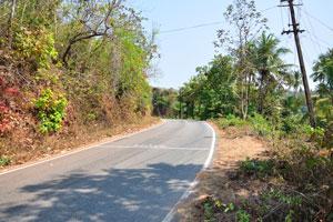 Дорога над храмом Шри Лакшминарайямграмдев
