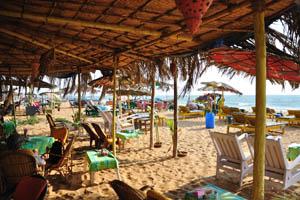 Пляж полон шезлонгов