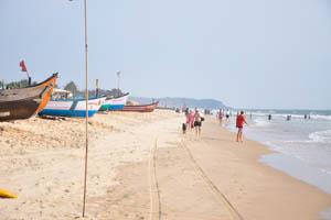 Пляж Кандолим находится на юге, в 3 км отсюда