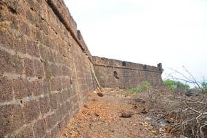 Высокая стена форта была очищена от деревьев