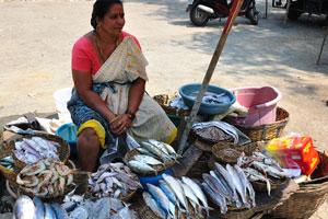Продавщица рыбы на рыбном рынке Колвы