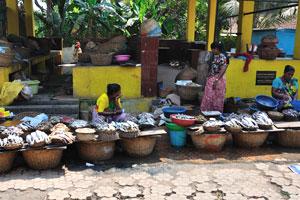 Обилие корзин на рыбном рынке Колвы