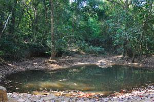 Природный бассейн питьевой воды