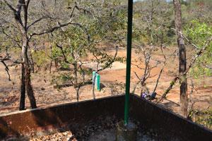 Вид с наблюдательной башни на питьевой бассейн для птиц