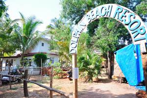 Пляжный дом отдыха Дельфин