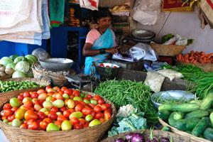 Новый рынок: очень дешёвые помидоры и огурцы