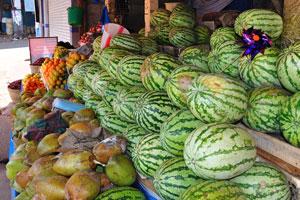 Новый рынок: арбузы и кокосы
