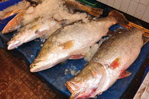 Рыбный рынок: большая рыба