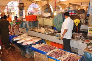Рыбный рынок: рыба посыпана льдом