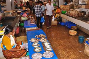 Рыбный рынок: немного мокро тут на полу от растаявшего льда