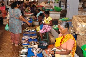 Рыбный рынок: много индийцев пришли сюда, чтобы купить рыбу