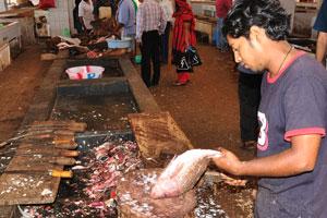 Рыбный рынок: мужчина чистит красного окуня