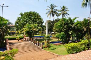 Городской сад Маргао: здесь растут различные виды пальм