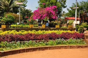 Городской сад Маргао: ряды разных цветовых гамм из цветов
