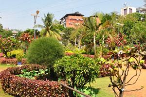 Городской сад Маргао: есть много дорожек кирпичного цвета в саду