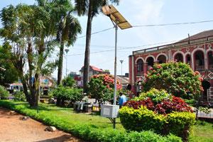 Городской сад Маргао: королевские пальмы