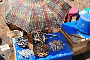 Старый рыбный рынок сейчас почти пуст