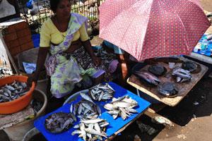 Старый рыбный рынок имеет очень маленький выбор из морепродуктов