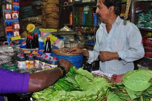 Новый рынок: листья бетеля, которые используются для приготовления паан