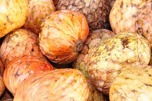 Новый рынок: зрелые кремовые яблоки на продажу