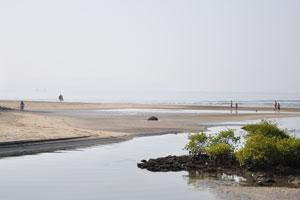 Место, где река впадает в море
