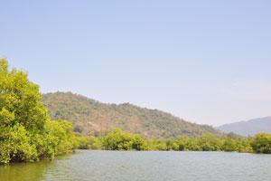 Озеро с крабами