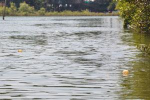 Рыбацкие поплавки наших крабовых ловушек