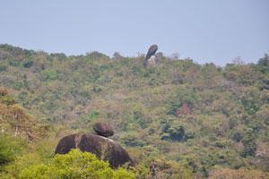 Огромные камни на склоне холма