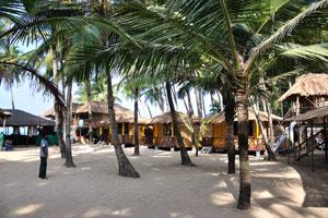 Кокосовые хижины Хай-Тайд: низкие пальмы создают экзотический вид