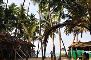 Вид на море от Кокосовые хижины Хай-Тайд
