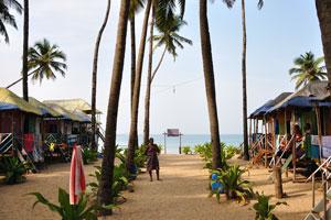 Шек 'Место с видом на море': хижины под высокими пальмами