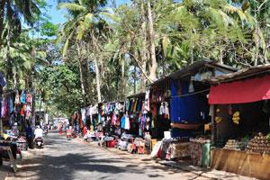 Солнечное село отдыхает в тени пальм в полдень