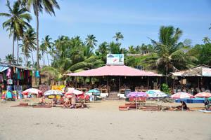 Маленький Вагатор: бар и ресторан Рыбий хвост