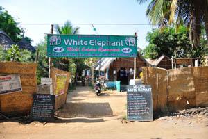 Ресторан многонациональной кухни Белый слон