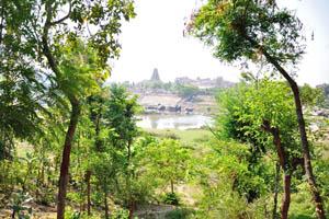 Вид на Храм Вирупакши из ресторана Шри Ума Шанкар