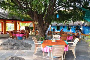 Столики ресторана Маугли