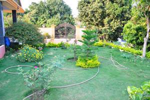 Зелёный двор богатого коттеджа